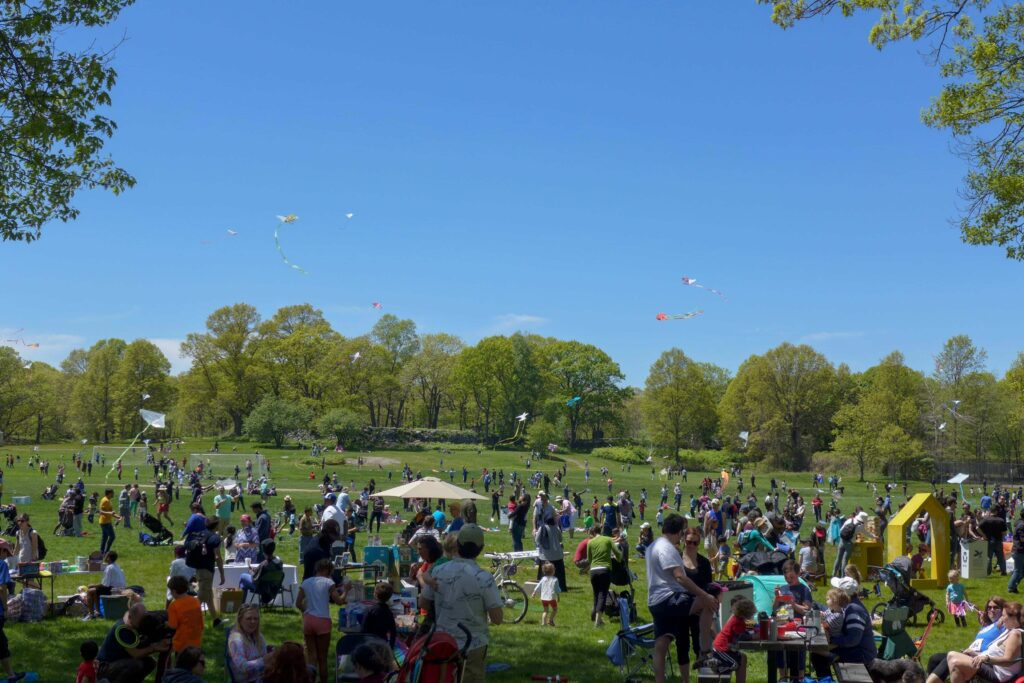 A crowd of people on a field with kites in the sky above.
